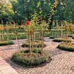 Treptower Park – Rosengarten