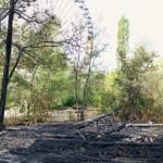 Großbrand (Brand 8) im Berliner Spreepark Plänterwald, 11.08.2014